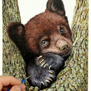 Paul Hopkinson painting a bear cub in watercolour