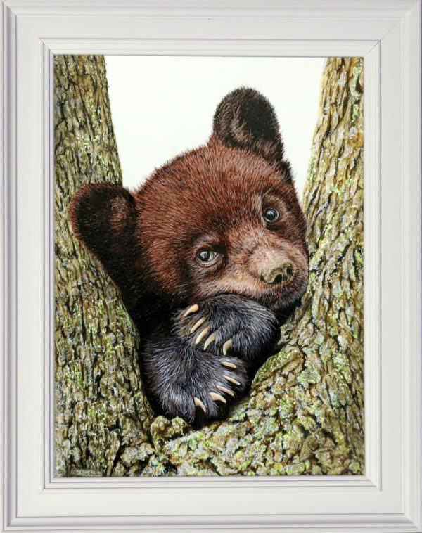 Watercolor black bear framed
