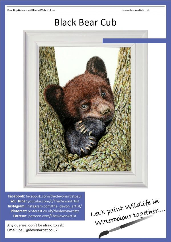 Watercolor tutorial painting bear cub