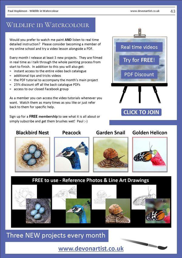 Watercolour PDF tutorials by Paul Hopkinson