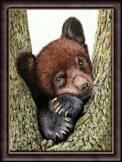 Watercolor painting of a black bear cub by Paul Hopkinson framed
