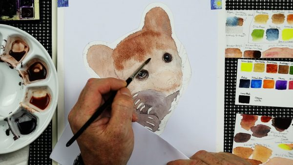 Work in progress bear watercolor painting lesson stage 1