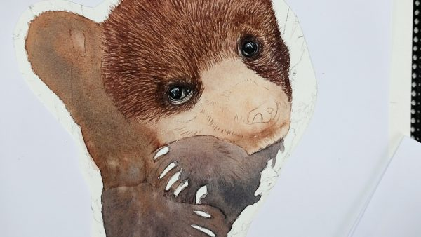 Work in progress bear watercolor painting lesson stage 2