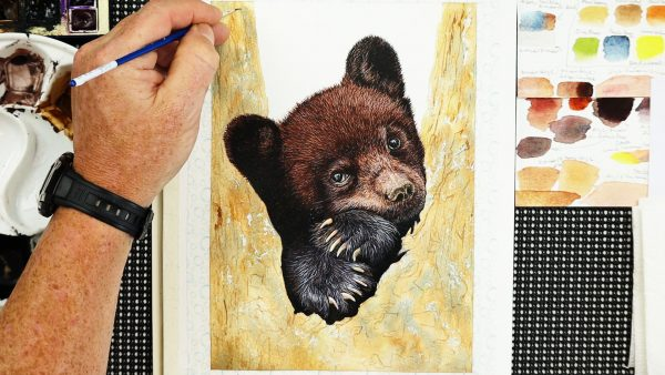 Work in progress bear watercolor painting lesson stage 4
