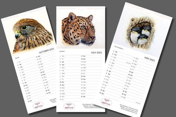 2021 wildlife calendar of watercolour paintings