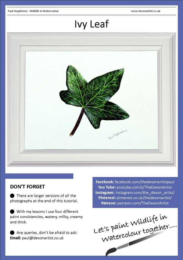 A botanical watercolor illustration tutorial of an ivy leaf