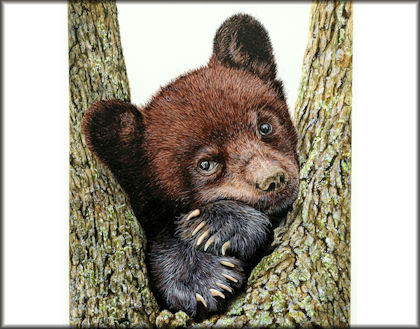 Button link to a video on how to paint a black bear in watercolor