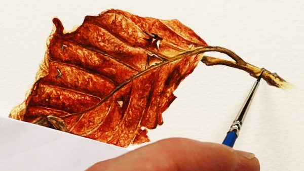 How to paint a realistic leaf in watercolor stage - 4