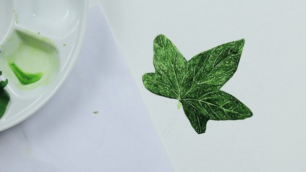How to paint a realistic watercolour ivy leaf - stage 2