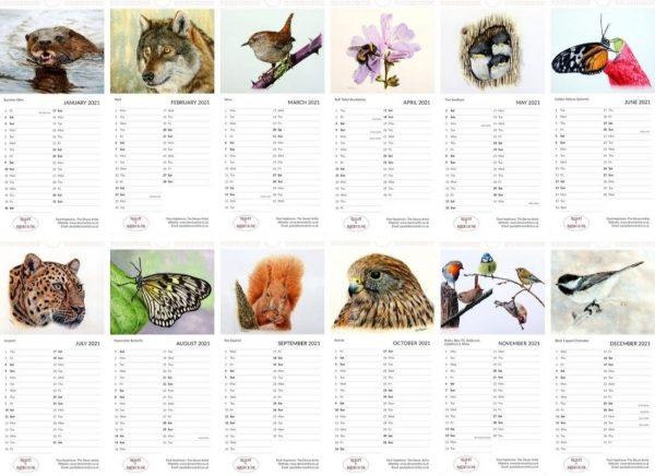 Paul Hopkinson calendar of watercolor wildlife