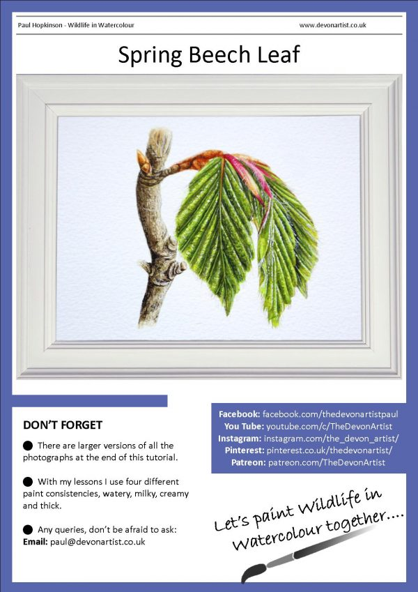 A realistic watercolor leaf painting tutorial