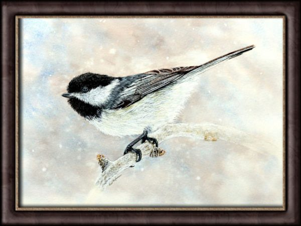 Watercolor painting of a chickadee by Paul Hopkinson in a frame