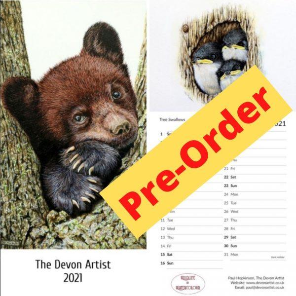 Pre-order a watercolor wildlife calendar