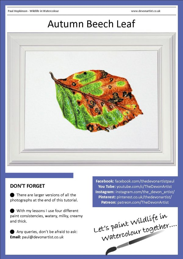 Watercolour tutorial on painting realistic leaves