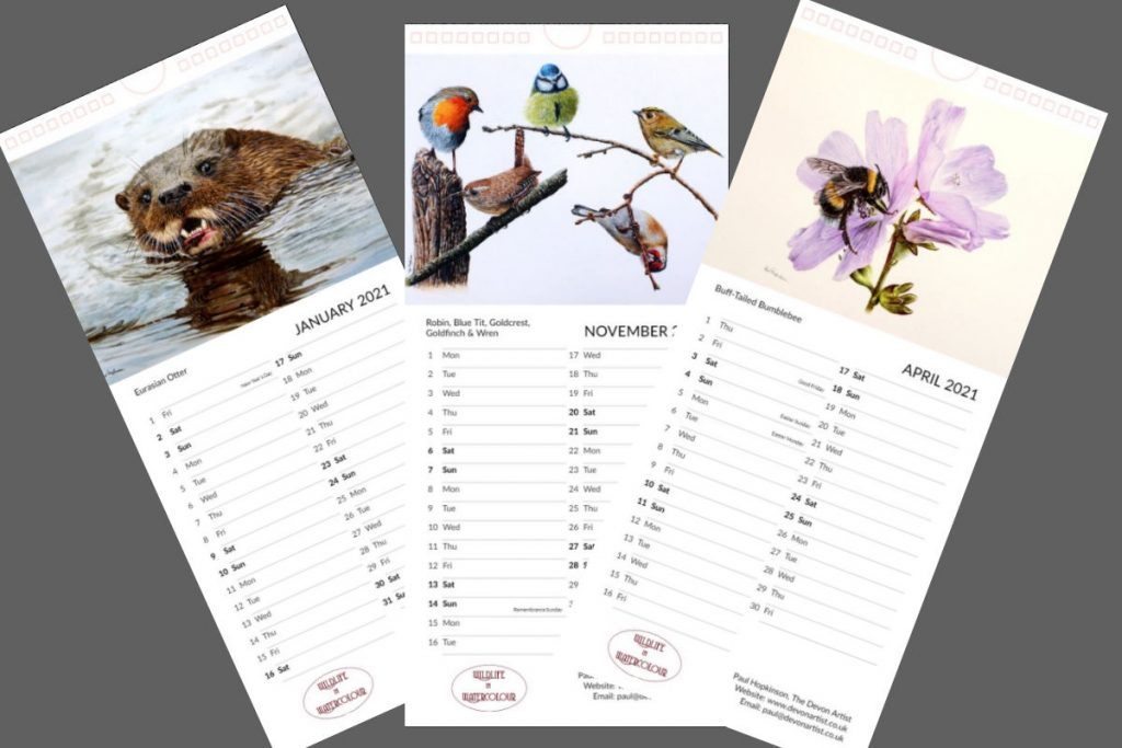 Wildlife painting calendar 2021