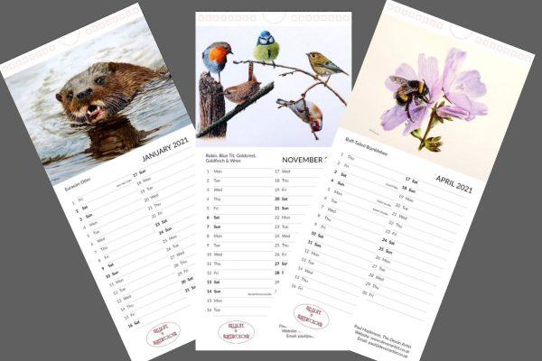 Wildlife painting calendar 2021