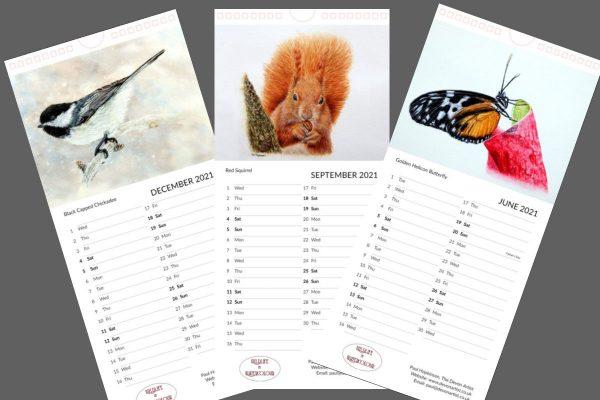 Wildlife in watercolor paintings on a calendar