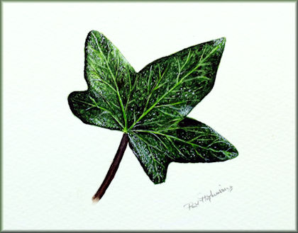 Button link to an ivy leaf watercolour video tutorial