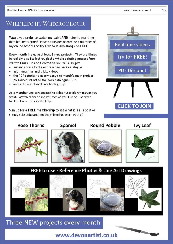 Downloadable watercolor lessons from Paul Hopkinson artist