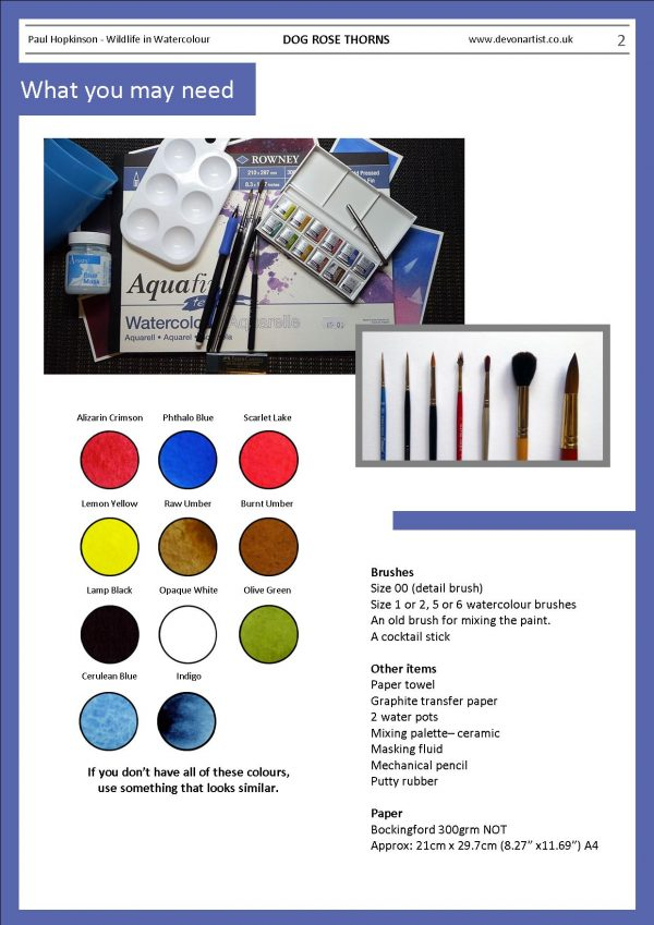 Materials needed to paint a thorny stem in watercolour