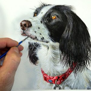 Paul Hopkinson painting a cocker spaniel dog in realistic watercolour
