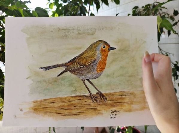 Testimonial for Paul Hopkinson's online watercolour painting lessons