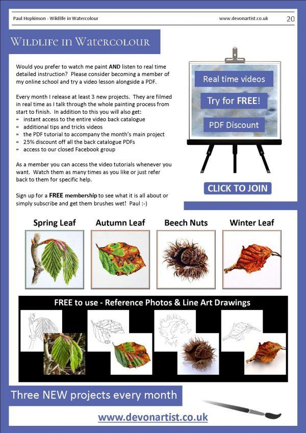 Botanical illustration PDF watercolour lessons