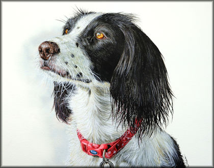 Button link to a dog watercolour video tutorial