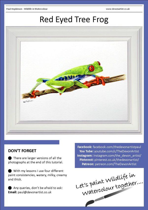 Tree frog watercolour PDF tutorial