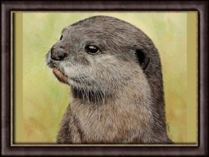 Watercolor video tutorial painting of an otter