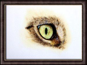 Cat's Eye Study