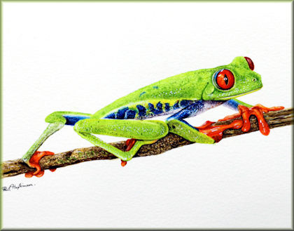 Button link to the Tree Frog watercolour video tutorial
