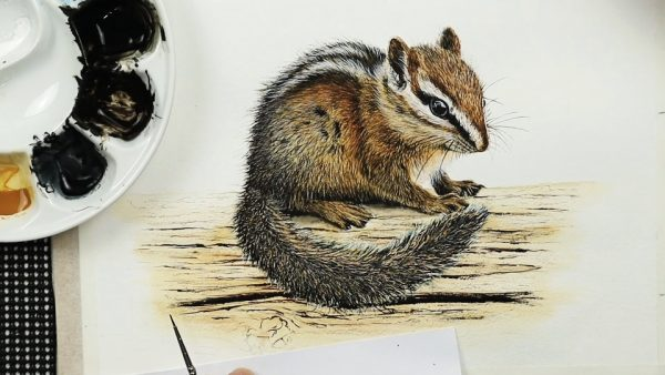How to paint a chipmunk in fine detailed watercolor step 4