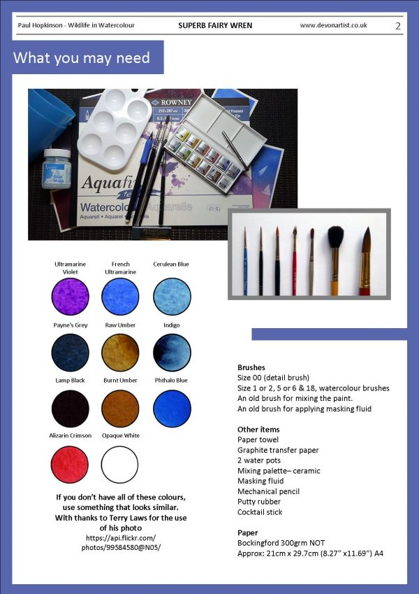 Materials needed to paint a fairy wren in watercolor
