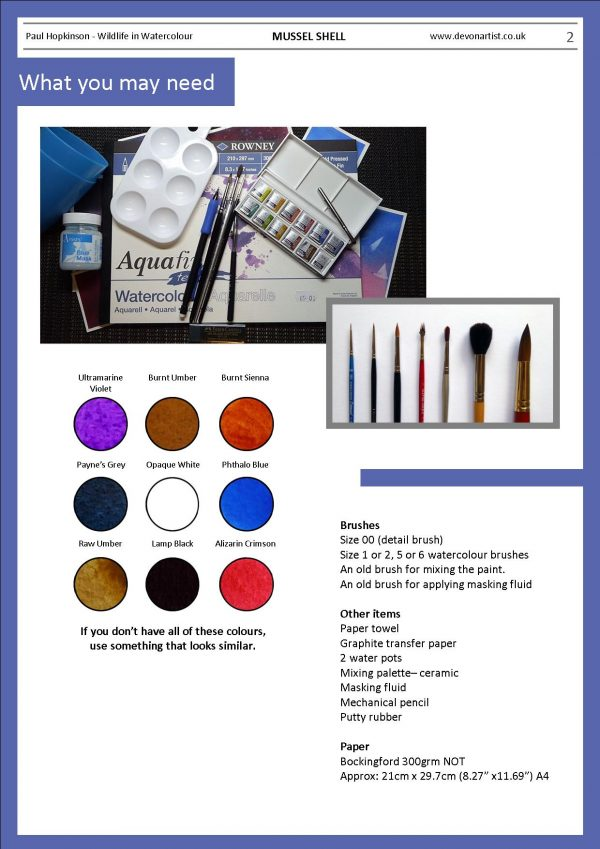 Materials needed to paint shells in watercolour