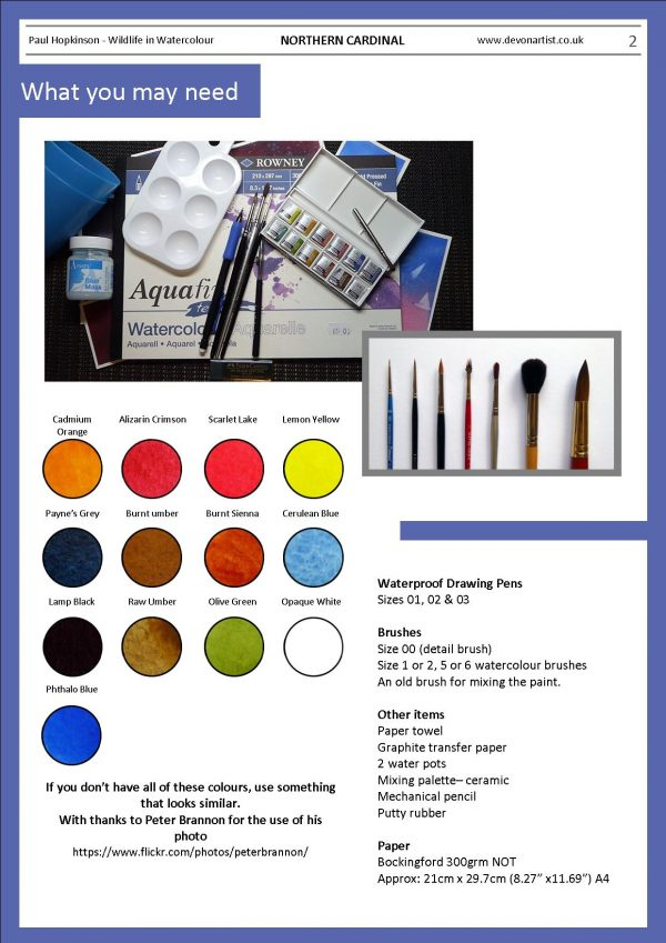 Materials needed to paint a red bird in watercolour