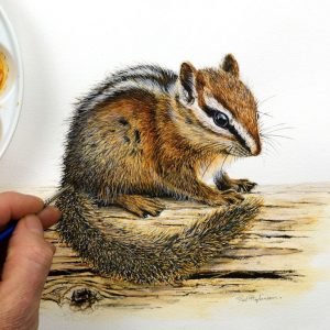 Paul Hopkinson painting a chipmunk in realistic watercolor