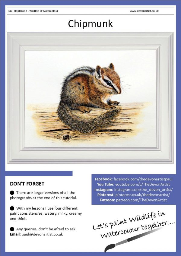 Realistic watercolor pdf tutorial painting a chipmunk animal