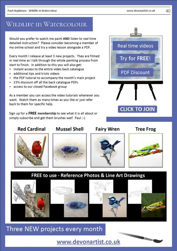 Watercolour tutorials written by Paul Hopkinson wildlife art tutor