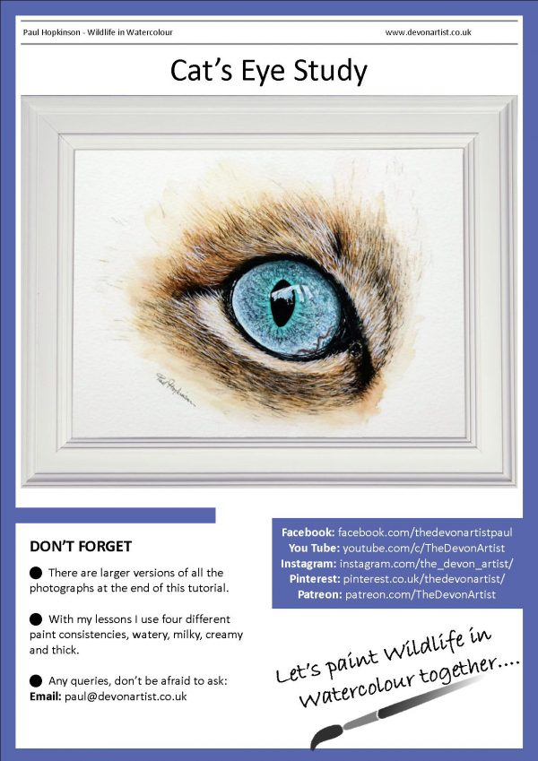 Detailed watercolour tutorial on a study of a cat's eye