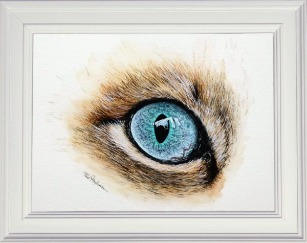 How to paint a realistic cats eye in watercolour framed painting
