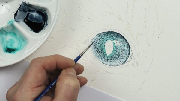 How to paint realistic eyes in watercolour step 2