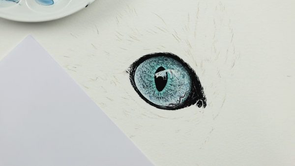 How to paint realistic eyes in watercolour step 3