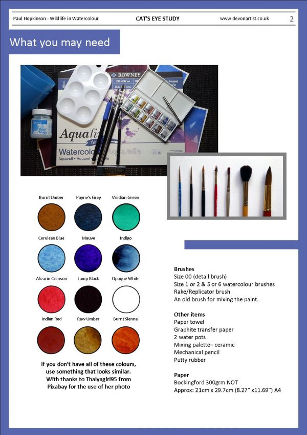 Materials needed to paint a cat's eye in watercolor