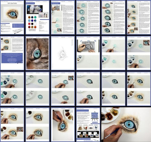 Overview image of a PDF watercolor tutorial of a cat eye study