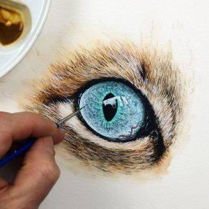 Paul Hopkinson painting a realistic watercolour cat eye study