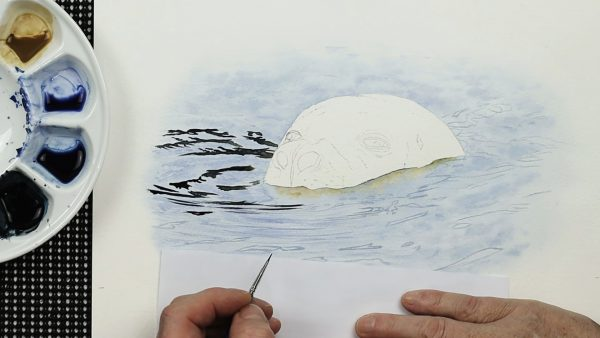 A realistic watercolour seal painting lesson step 1
