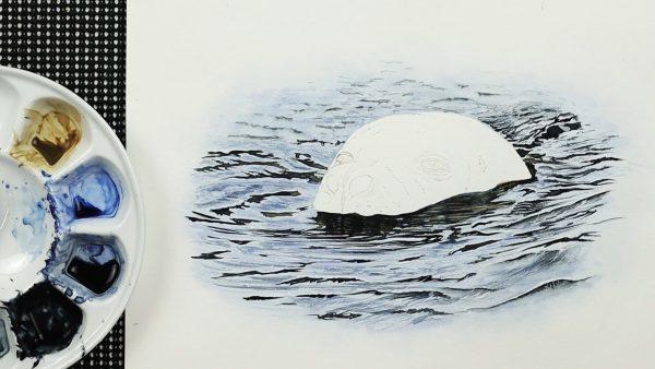 A realistic watercolour seal painting lesson step 2