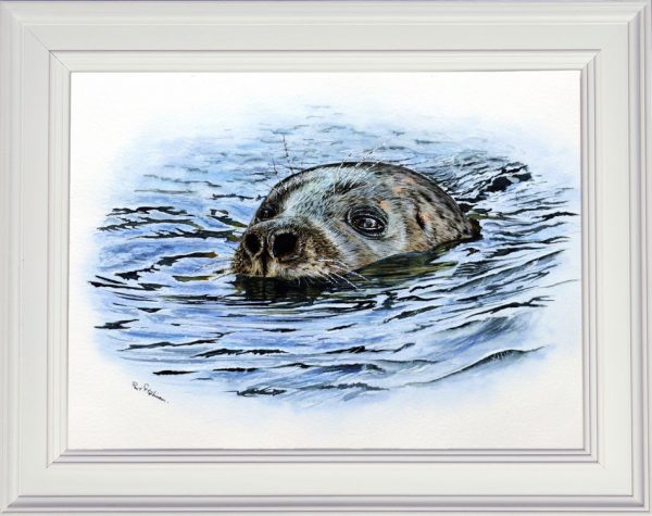 Seal watercolour painting displayed in a white frame
