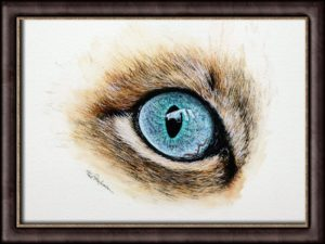 Watercolor painting tutorial of a cat eye study by Paul Hopkinson, shown framed